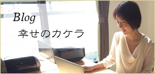 ブログ 幸せのカケラ